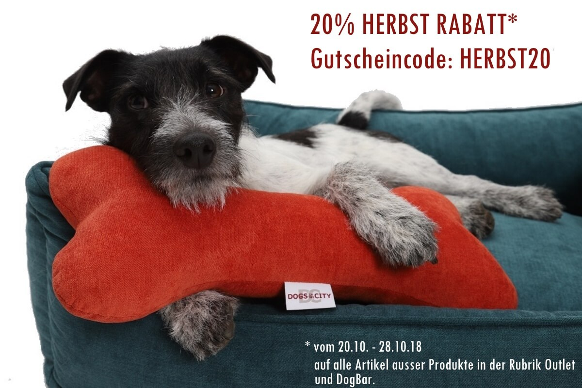 20% HERBST RABATT - Jetzt wird´s gemütlich! Now it's getting cozy! | DOGS in the CITY