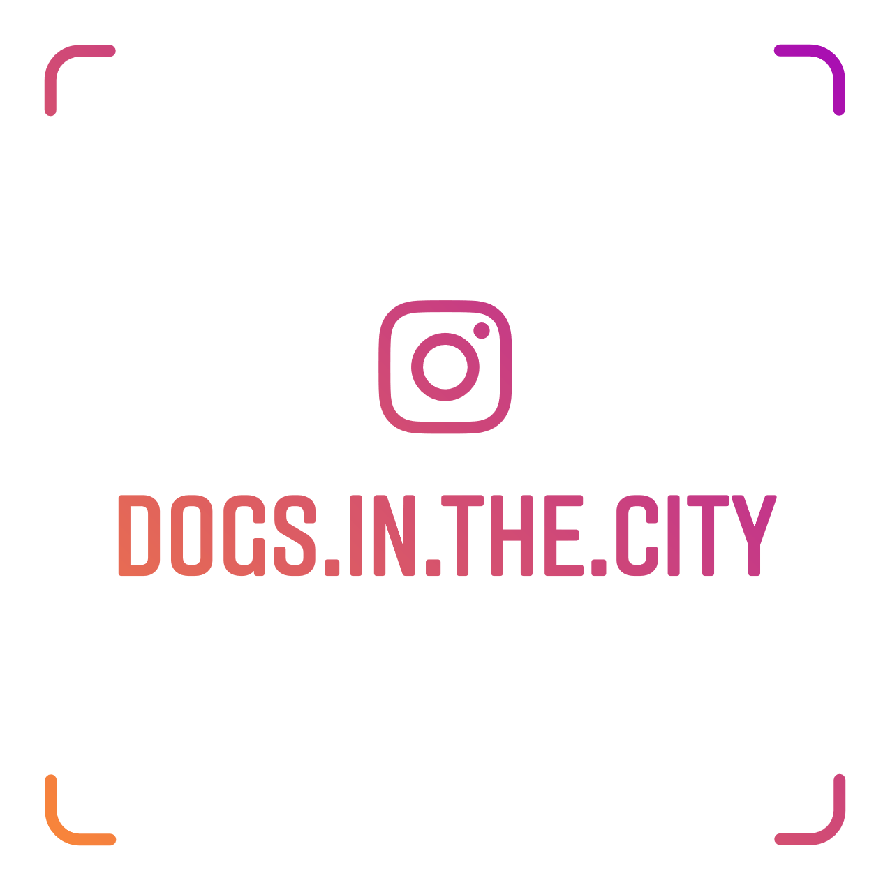 for more pictures and colourful stories...our Instagram name tag: | DOGS in the CITY
