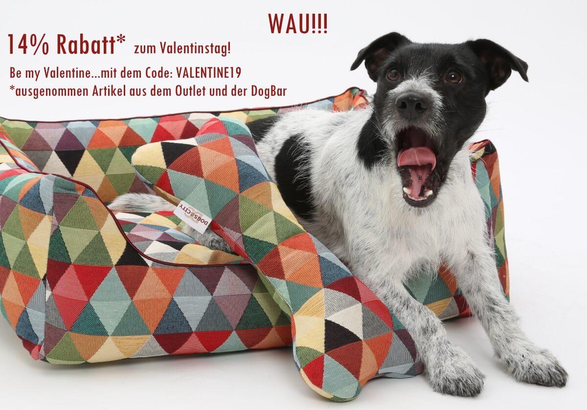 WAU! 14% Rabatt* zum Valentinstag! Be my Valentine mit dem Code: VALENTINE19 (gültig bis 14.02.19) | DOGS in the CITY