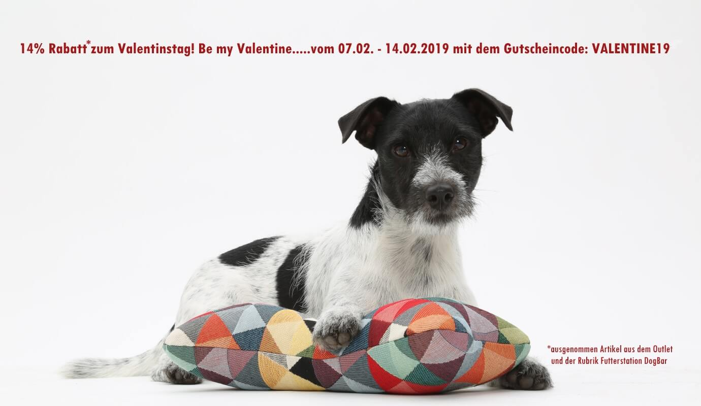 14% Rabatt*! Be my Valentine....vom 07.02.- 14.02.2019 Rabattcode: VALENTINE19 | DOGS in the CITY
