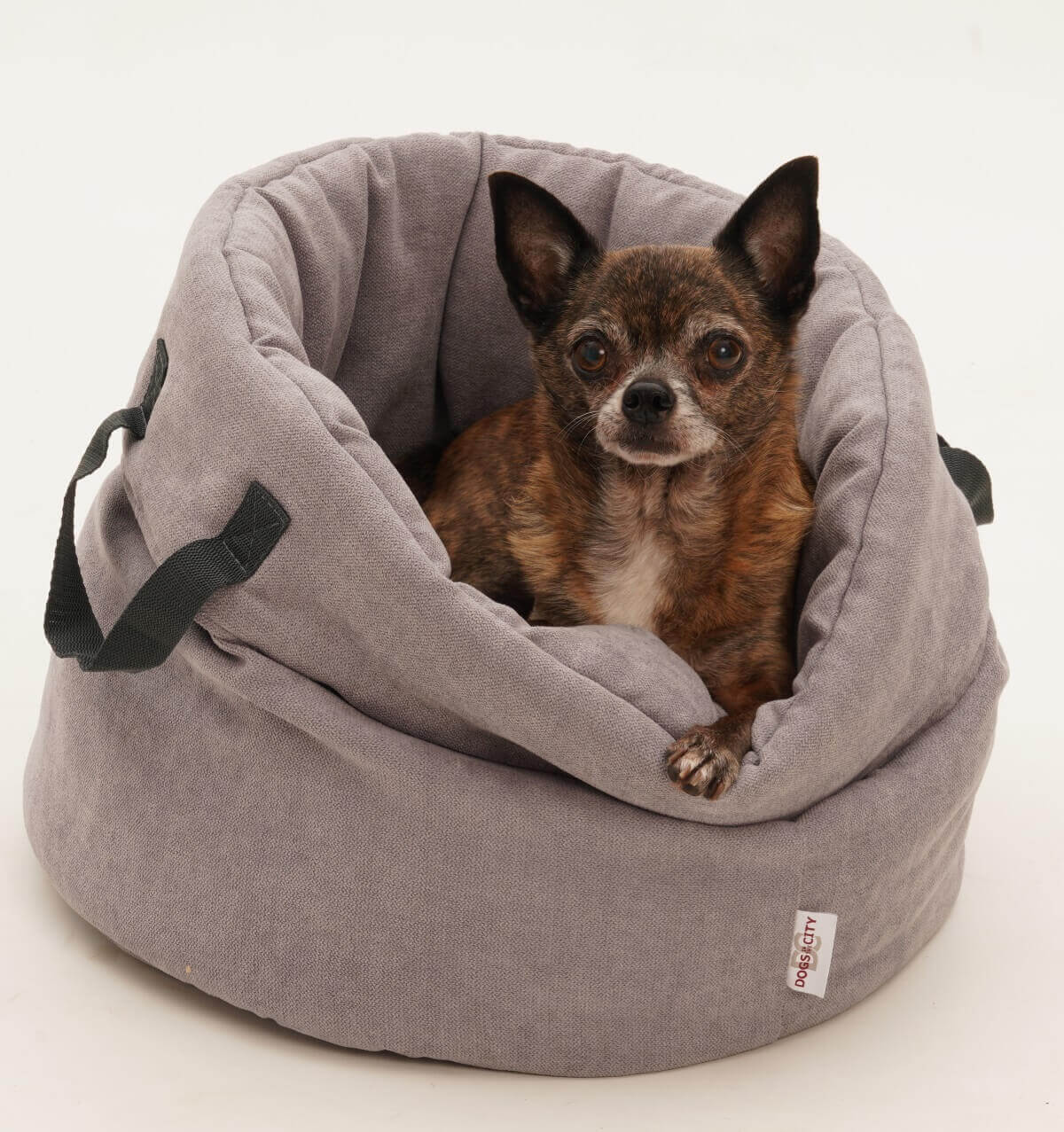 MY LITTLE BASKET ...NEW IN! | DOGS in the CITY