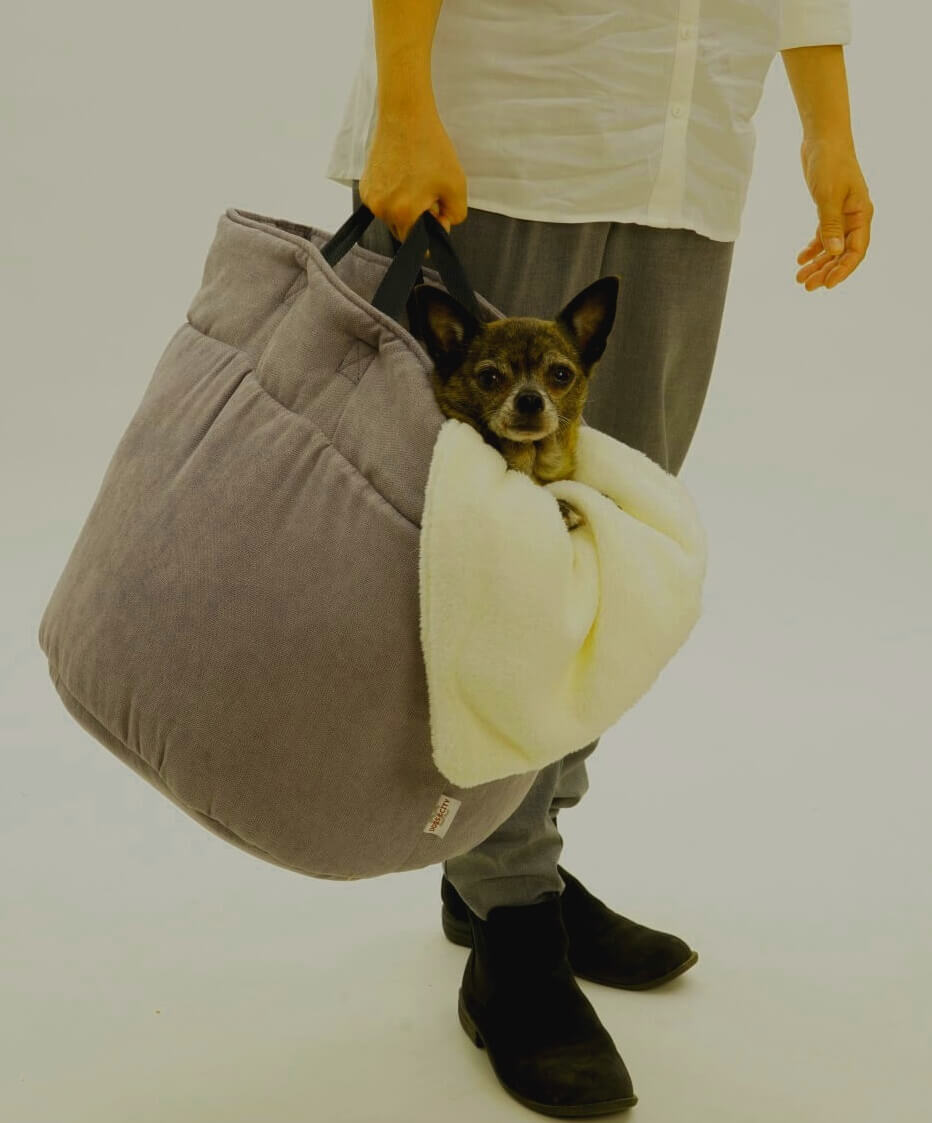 The perfect way to keep your paws dry ;-) | DOGS in the CITY