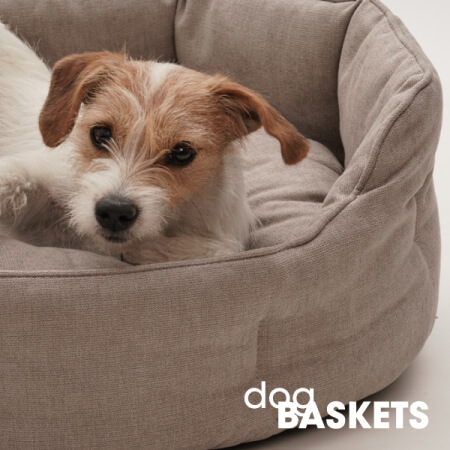 Dog beds \u0026 Dog cushions | DOGS in the CITY