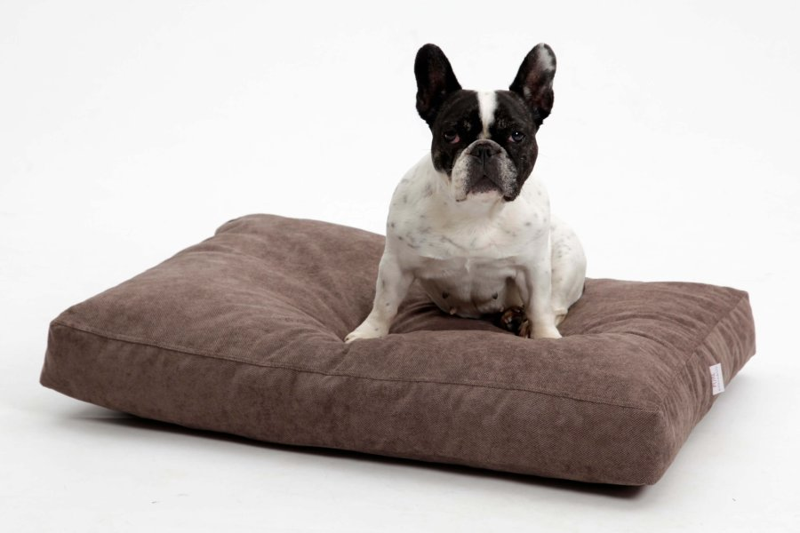 Dog Bed Cushion Madison brown