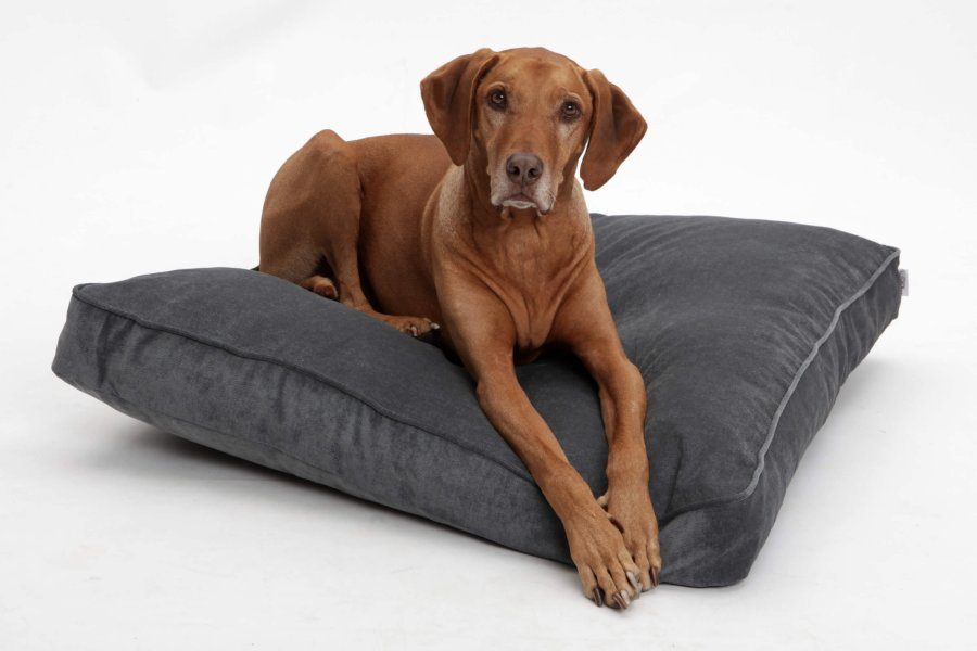 Dog Bed Mystic anthracite grey
