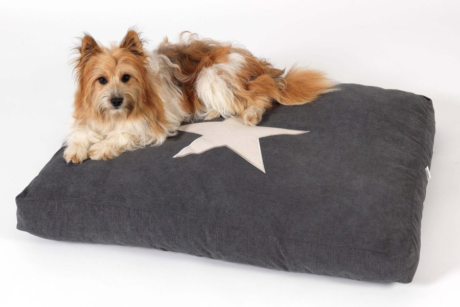 Dog Bed Cushion Star anthracite grey