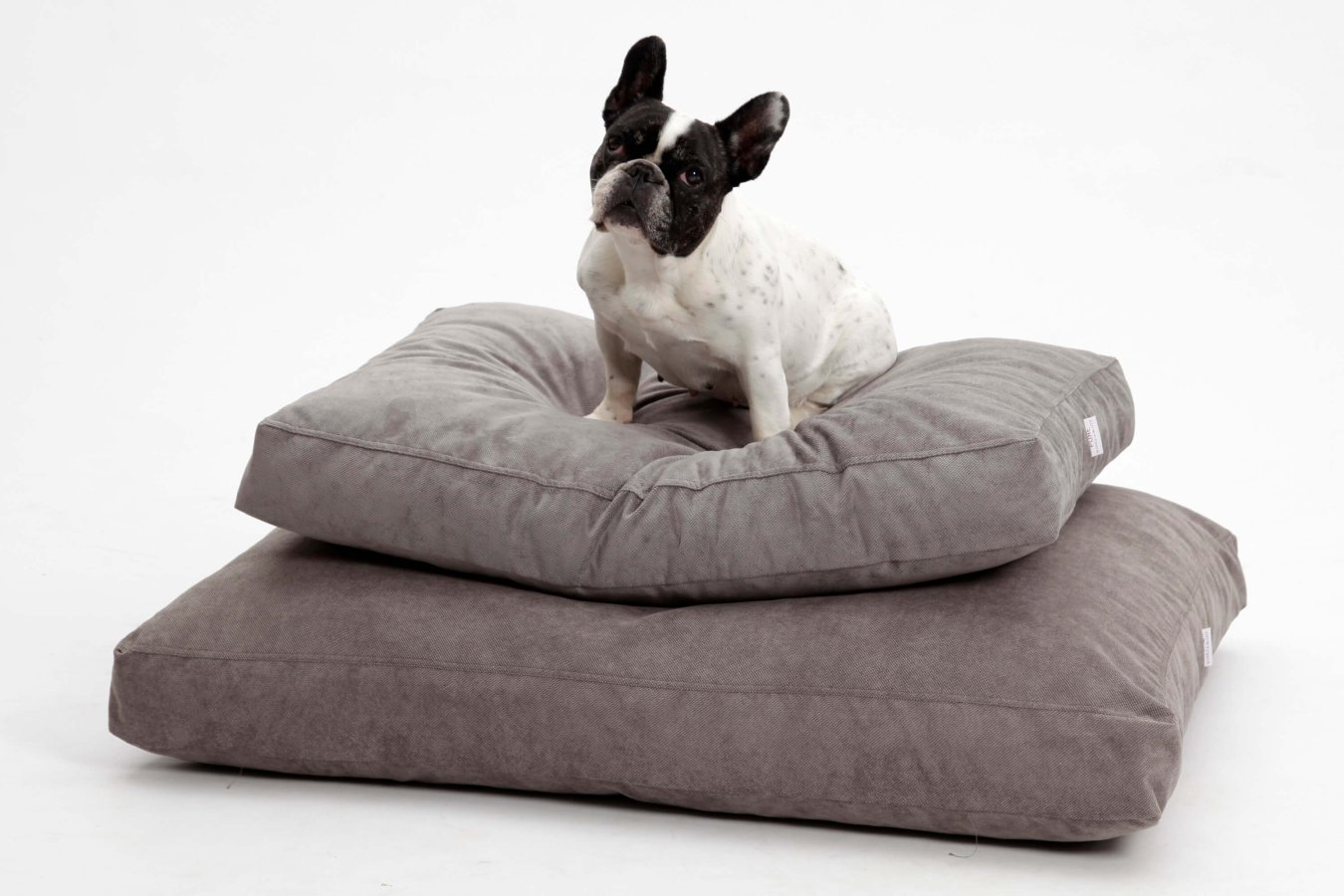 Dog Bed Cushion Madison grey