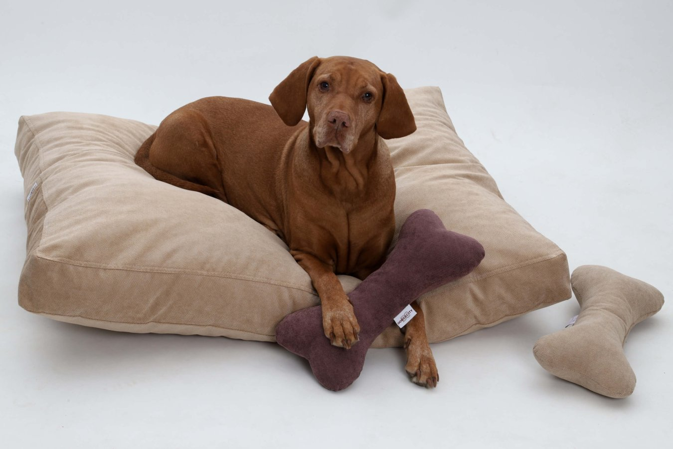 Dog Bed Cushion Madison beige sand