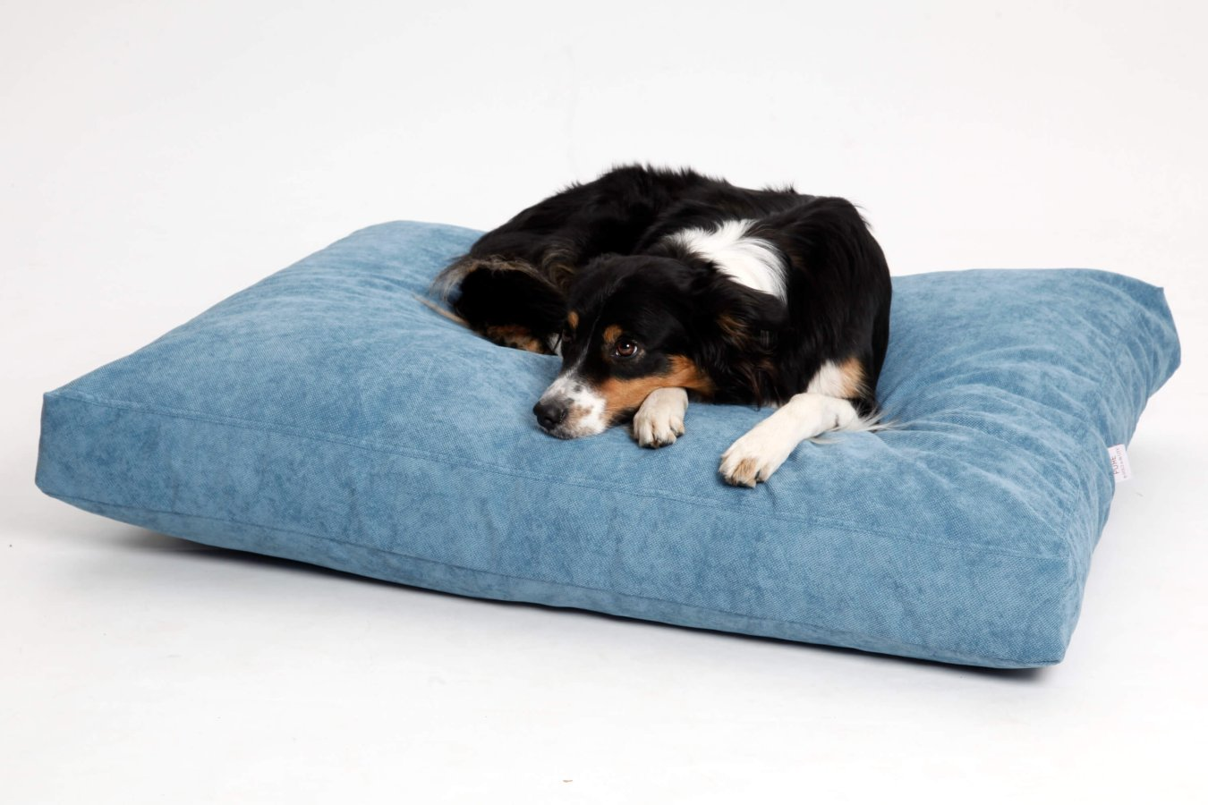 Dog Bed Cushion Madison turquoise