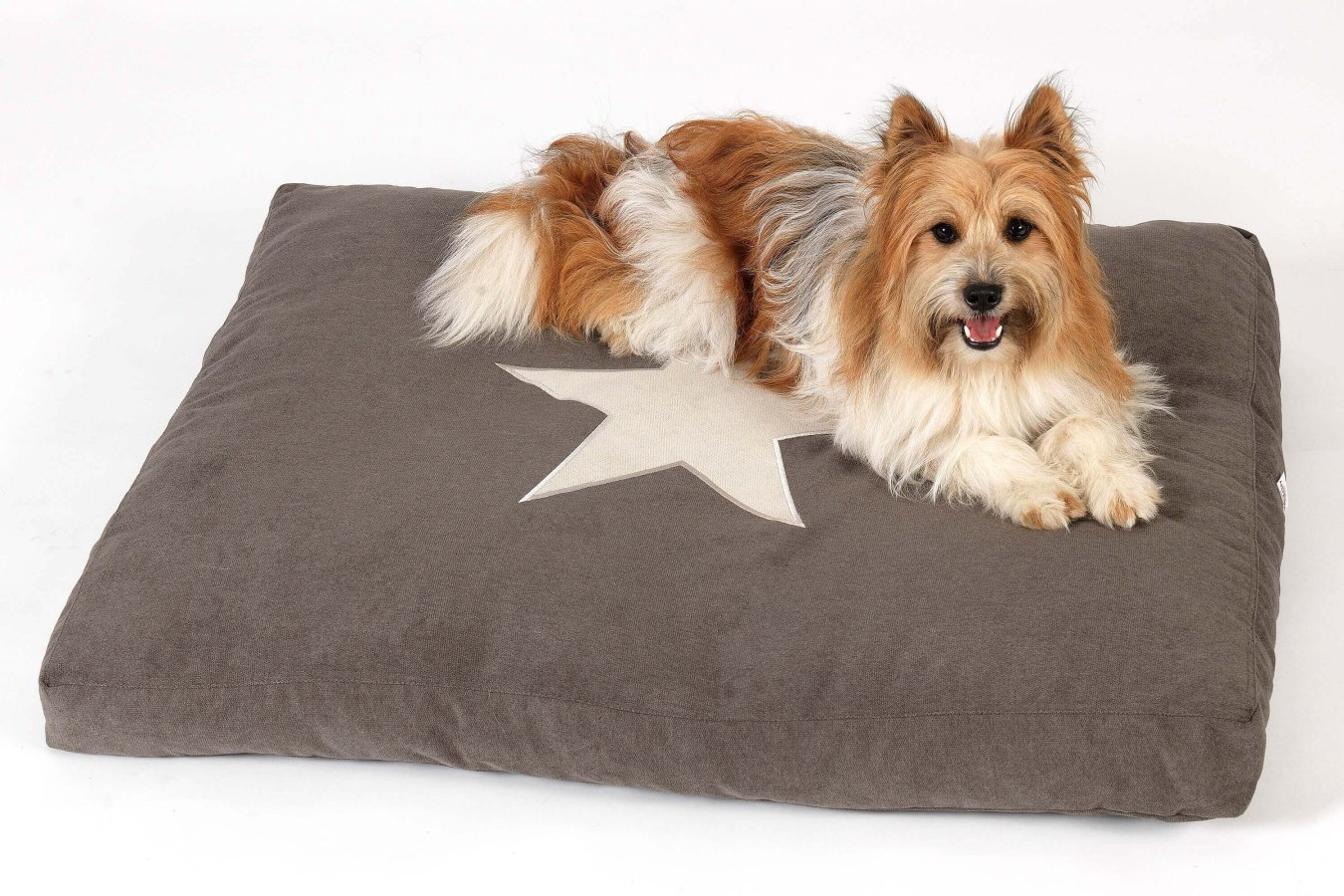 Dog Bed Cushion Star mud brown