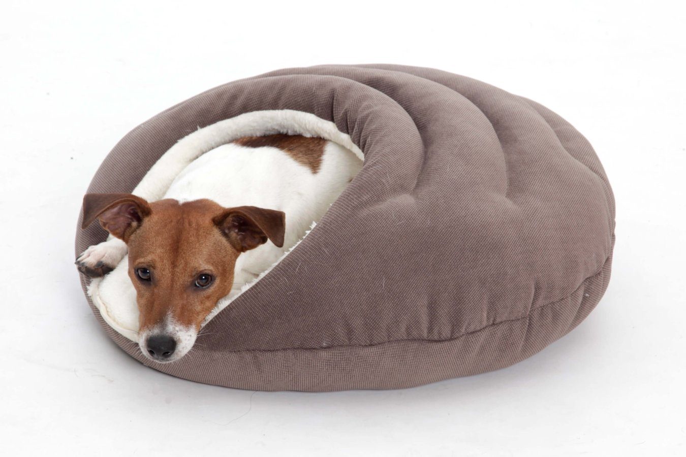 Dog Bed cave Bubble brown