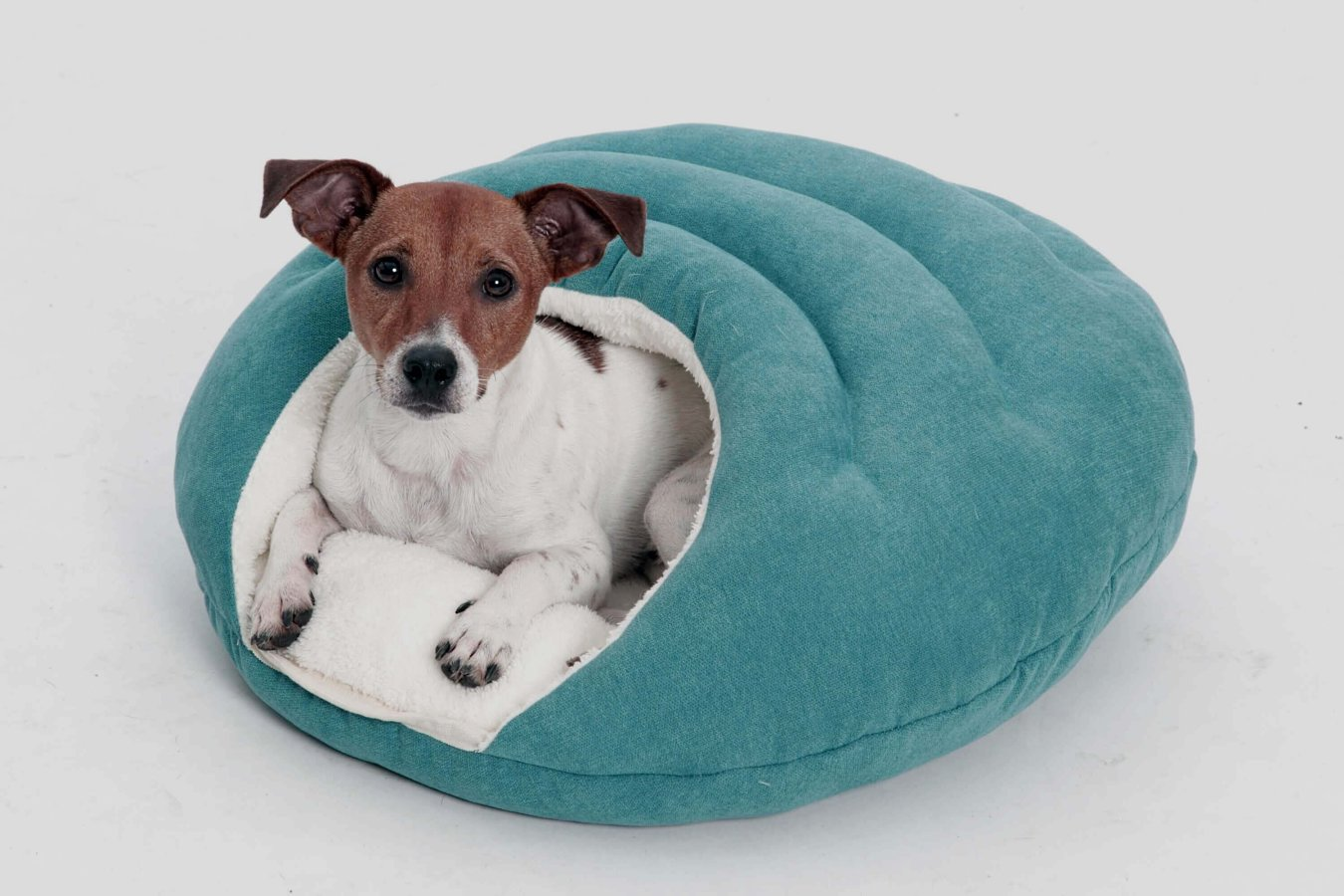 Dog Bed cave Bubble petrol blue