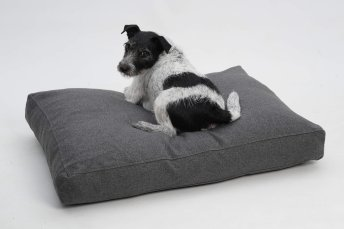 Dog Bed cushion Brandon anthracite