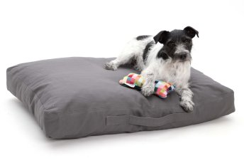 Dog Bed cushion Hamptons cotton canvas grey