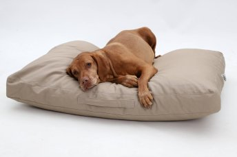 Dog Bed cushion Hamptons cotton canvas sand beige