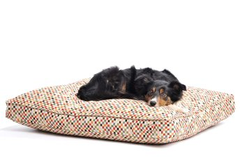 Dog Bed Cushion Sanibel red