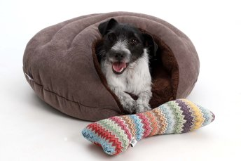 Dog Bed cave Bubble brown brown