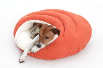 Dog Bed cave Bubble orange