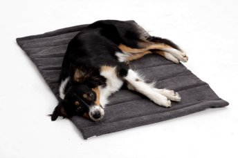 Travel Mat / Travel Bed Madison anthracite grey